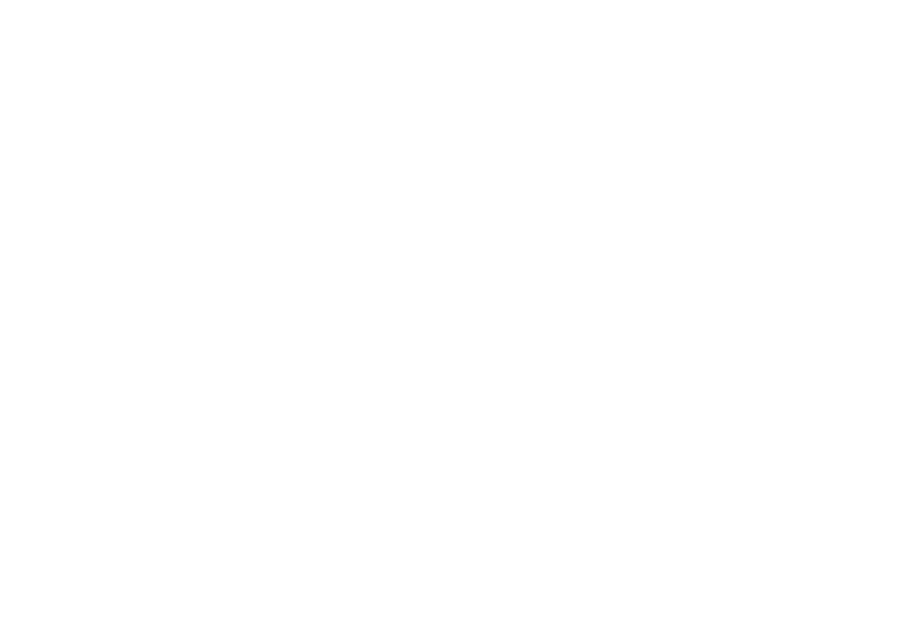 Bringing the world's best toys to the world's best playground.